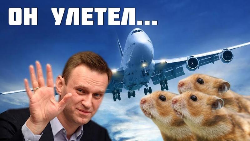 Навальный бросил своих хомяков в тюрьме