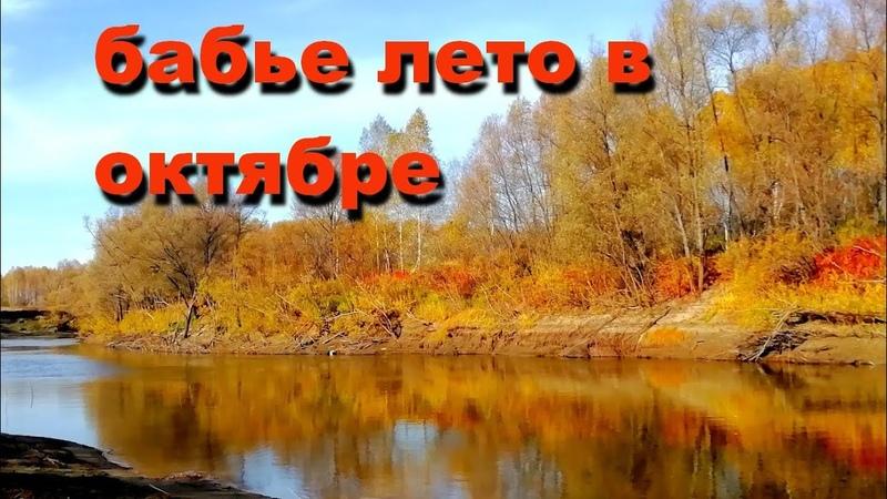 051 Окунево Бабье лето в октябре ч 2