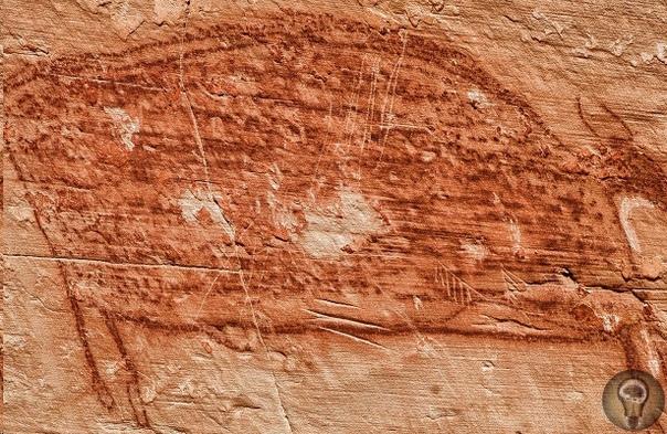 В Египте обнаружена пещера с необычными наскальными рисунками