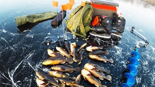 МОЙ ЛУЧШИЙ ПЕРВЫЙ ЛЕД! Ротан на ЖЕРЛИЦЫ, да какой! Зимняя рыбалка 2019-2020