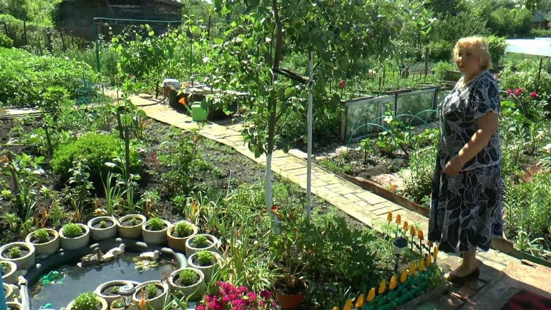 Работники районного Дома культуры в формате видеовстречи рассказали о петровчанах-садоводах