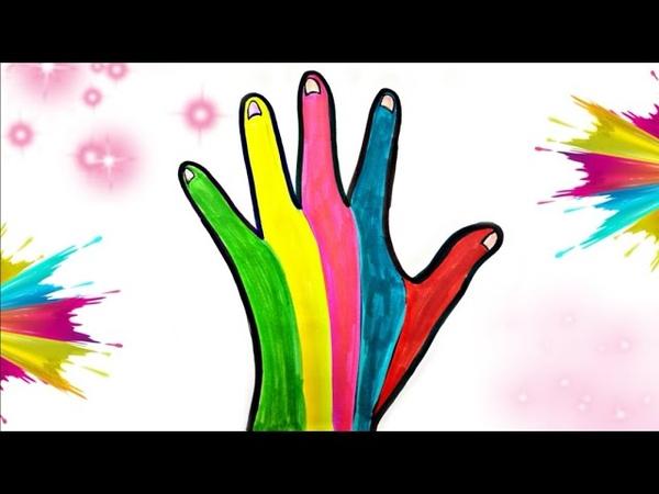 Come disegnare la mano impariamo i colori con Sofi Meri per i piu piccoli bambini