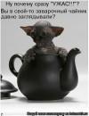 Персональный фотоальбом Гули Хафизовой