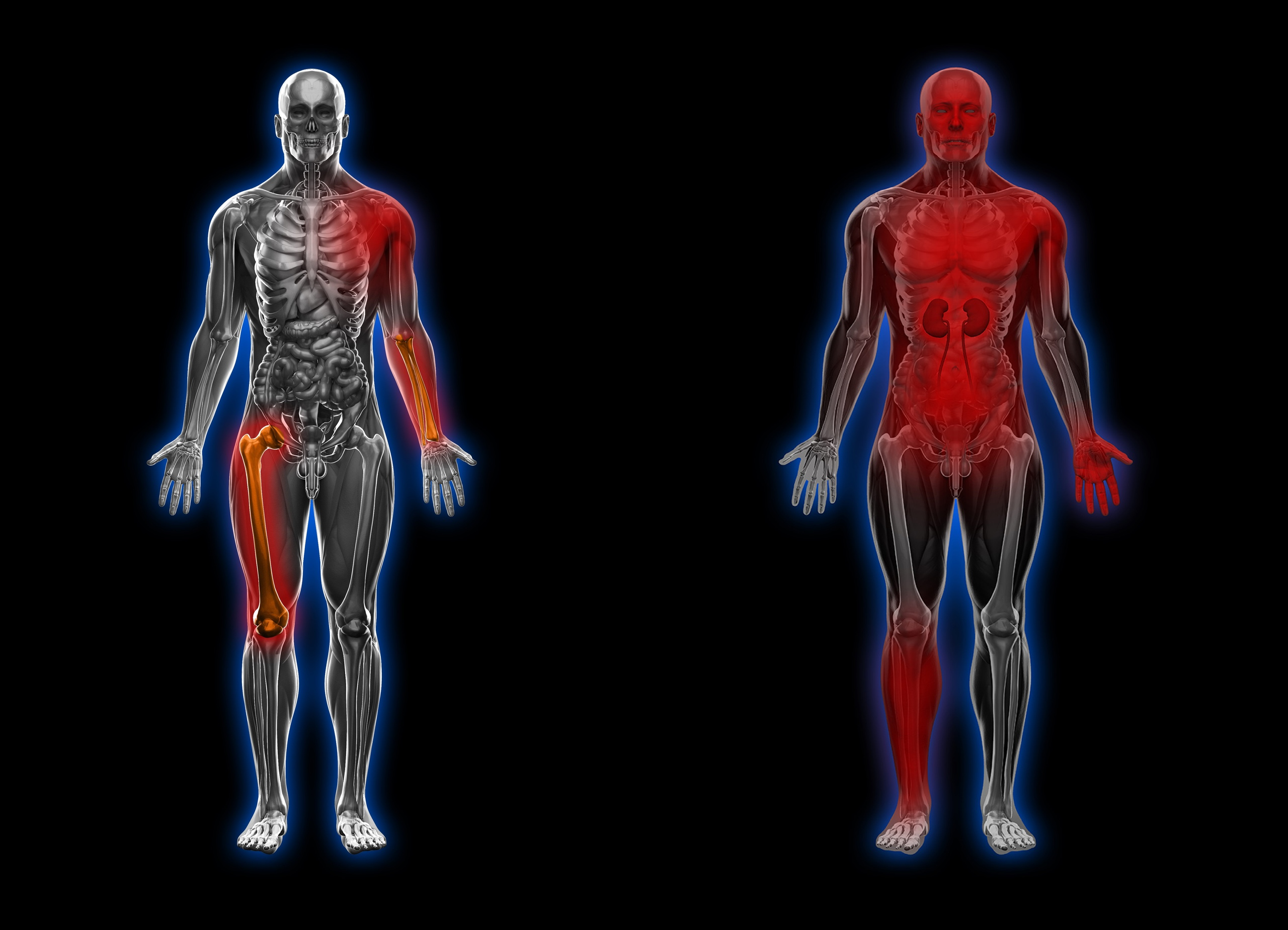 Немного о метаболизме в SCUM