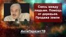 Н. Левашов - Связь между людьми. Помощь от деревьев. Убийство растений и животных. Продажа земли
