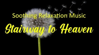 Stairway to Heaven💛Relaxing Sleep Music - Peaceful Piano Music, Stress Relief Music💛