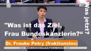 "Dr. Frauke Petry (fraktionslos): ""Was ist das Ziel, Frau Bundeskanzlerin?"" |"