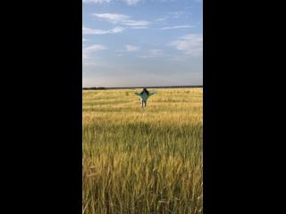Лиза Заикина в поле ☀️