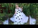 Video_134656_260321.mp4