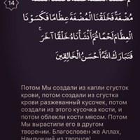 АлиханКазбек
