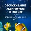 Сервис Аквариум - обслуживание аквариумов