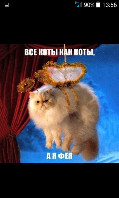 фото из альбома Вероники Захаровой №4