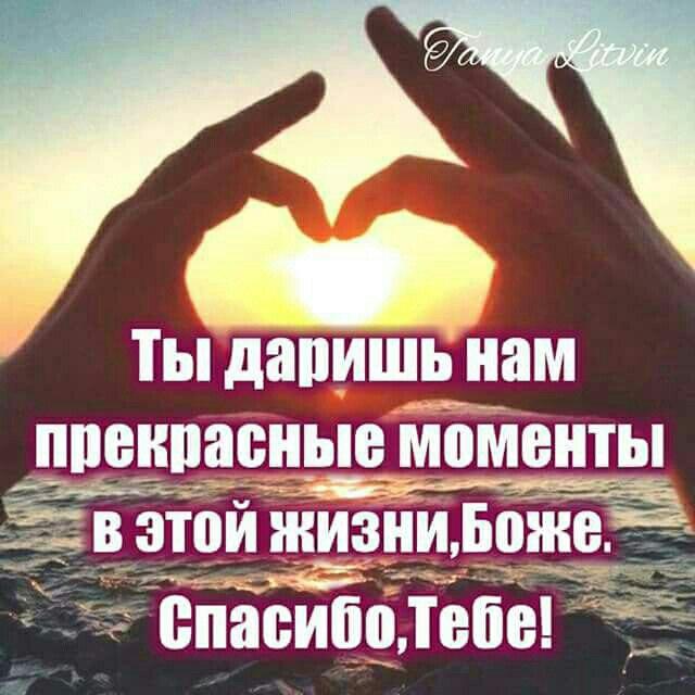 фото из альбома Александра Оляновского №4
