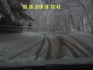Зима неожиданно вернулась и переломала кучу веток и деревьев! Мстит!