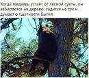 Элеонора Смеренова-Браиловская фотография #10