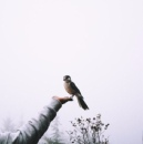 Персональный фотоальбом Розы Мусахан