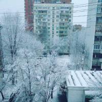 Елена Новоселова фото №33