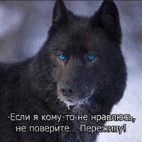 Фотография Вадима Молнягина