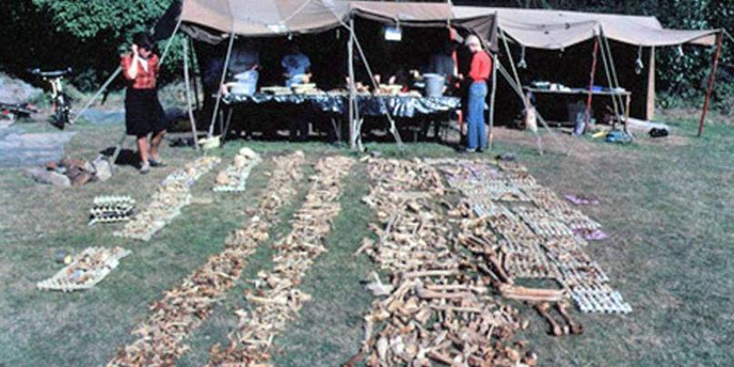 Говорящие кости: братские могилы эпохи викингов, изображение №3