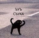 Lada Catfish фотография #6