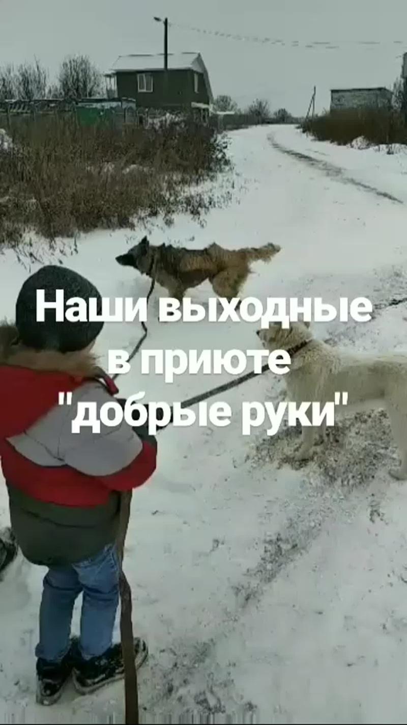 VID_28040528_001032_194(0).mp4