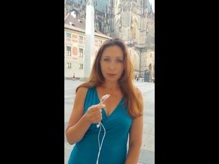 Video by Кубанские новости