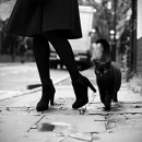 Фотоальбом Марины Тимофеевой