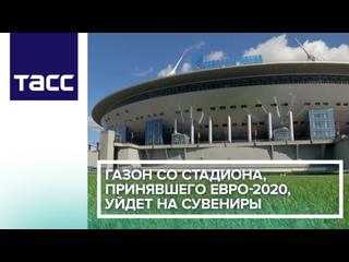 Газон со стадиона, принявшего Евро-2020, уйдет на сувениры