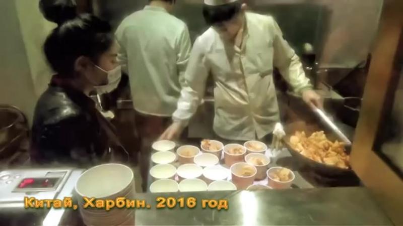Ресторан создателя гобаожоу и самый вкусный салат Харбин. Русско-китайская кухня. Великолепно!.mp4