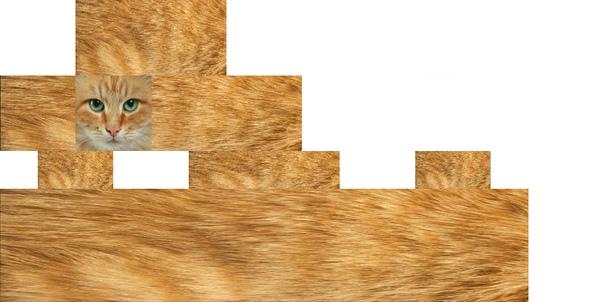 скины котов для майнкрафт #4