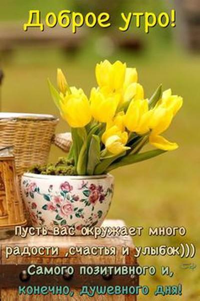 Маша Савельева
