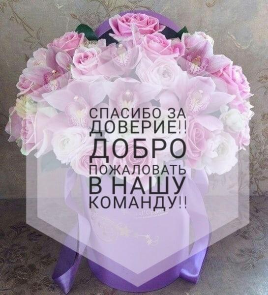 фото из альбома Марины Осиповой №12