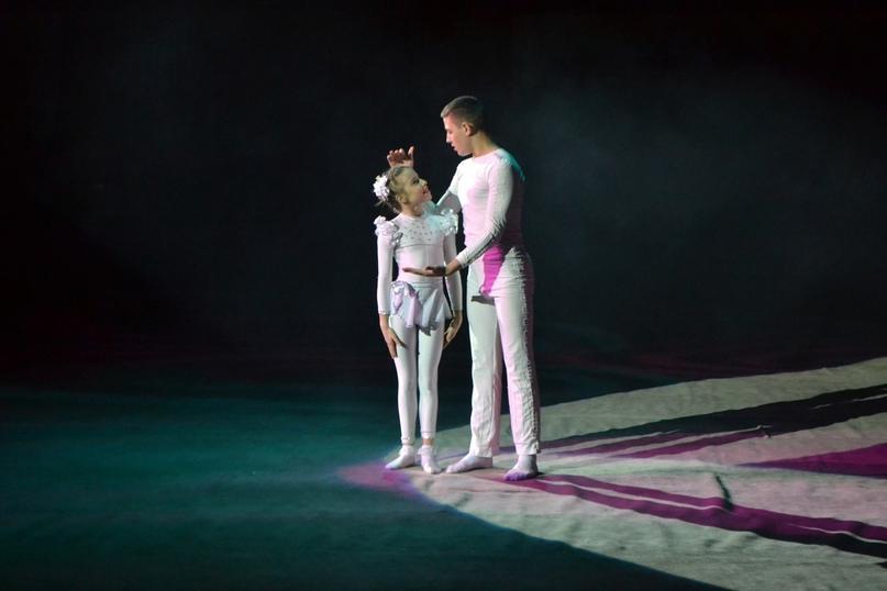 Режиссёр в цирке, изображение №3