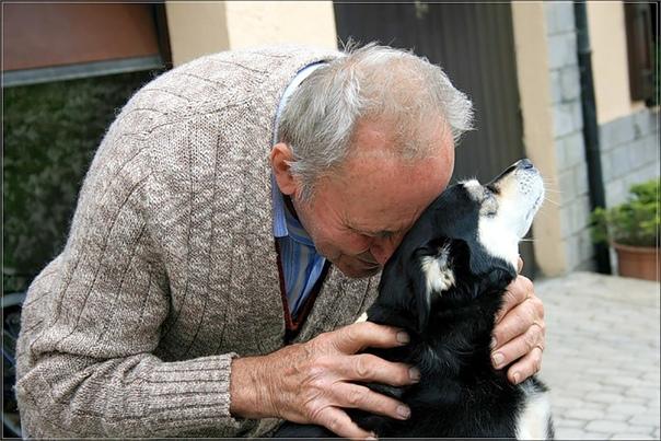 У моего деда была собака и звали его Бобка Замечательный был пес, который признавал только дедушку. Он был его главный хозяин. Переехал дедушка всей семьей в новый дом, а Бобку, естественно, с
