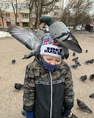 Denis Gazizov фотография #8