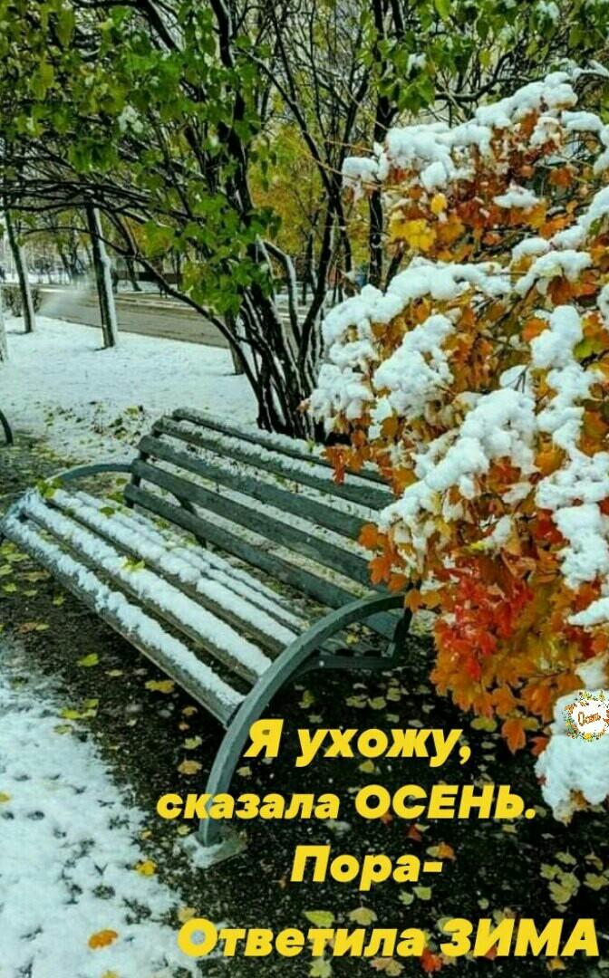 Vfro4hZ6jbA.jpg?size=672x1080&quality=96