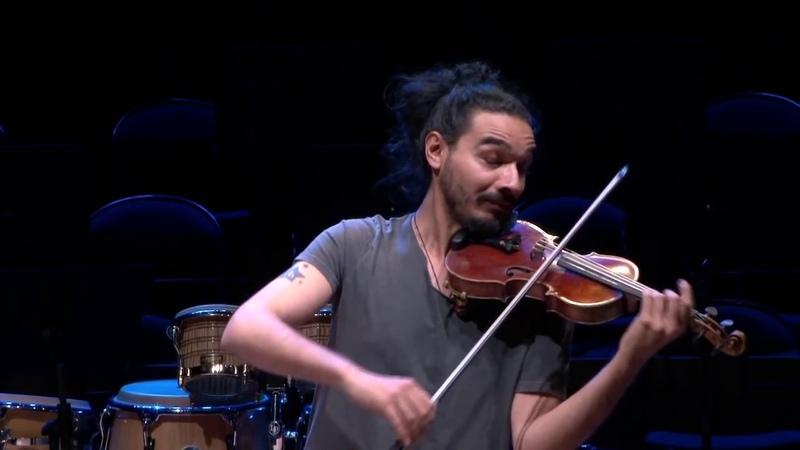 Bach Partita n°2 Chaconne Nemanja Radulovic violon