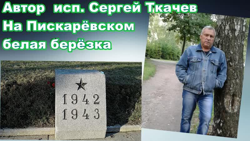 АВТОР ИСП. СЕРГЕЙ ТКАЧЕВ - На Пискарёвском белая берёзка