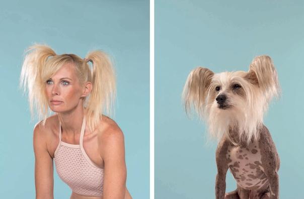 Фотограф сопоставил фотографии владельцев с фотографиями их собак. Джеррард Гетингс, собрал фотографии четвероногих рядом с фотографиями их владельцев. Талант, креативность и, конечно же,