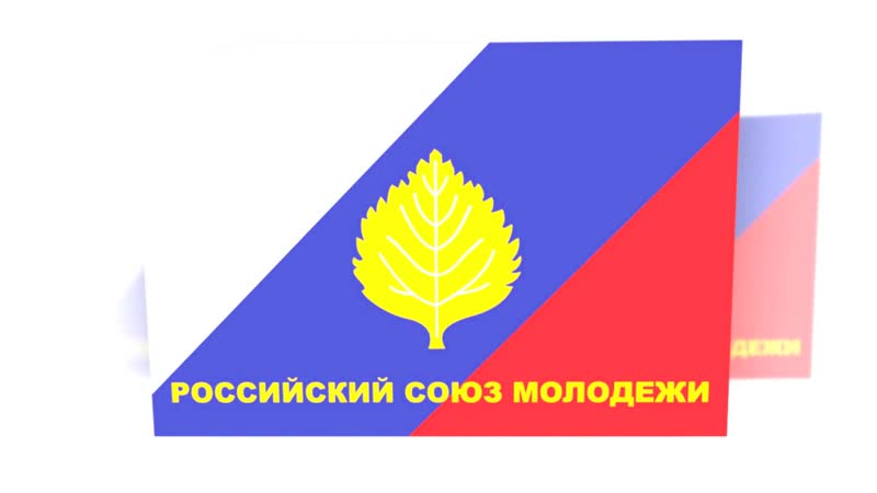 Бежаницкая районная организация Российского Союза молодёжи