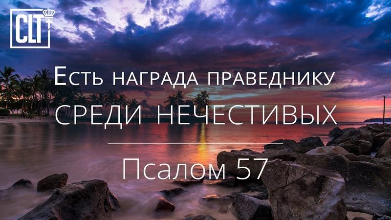 Есть награда праведнику среди нечестивых Псалом 57 Библия