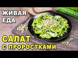 Зелёный салат с проростками маша: пп рецепт с ростками маша, шпинатом, перцем и огурцами. Живая еда.