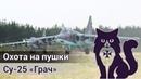 Су-25 Грач - Охота на пушки (DCS World Stream) | WaffenCatLive