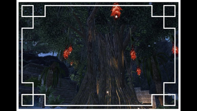 ESO Housing Visiting Rjoltzch's Hist place