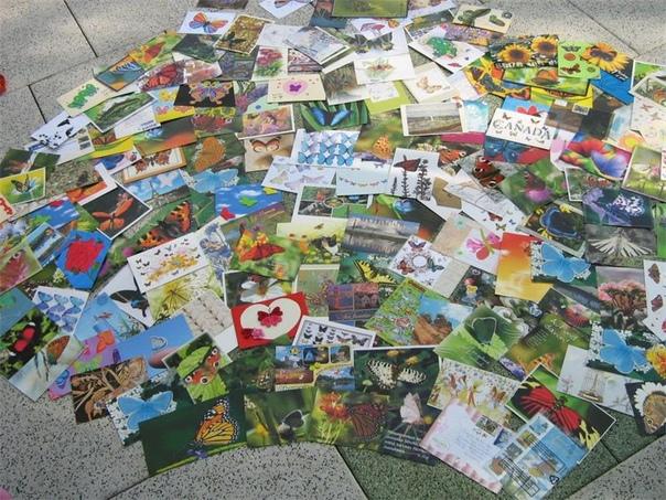 все обмен открытками по всему миру официальный насмешки
