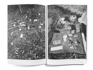 """Лес как экспозиция: художественные практики группы """"побеги."""""""