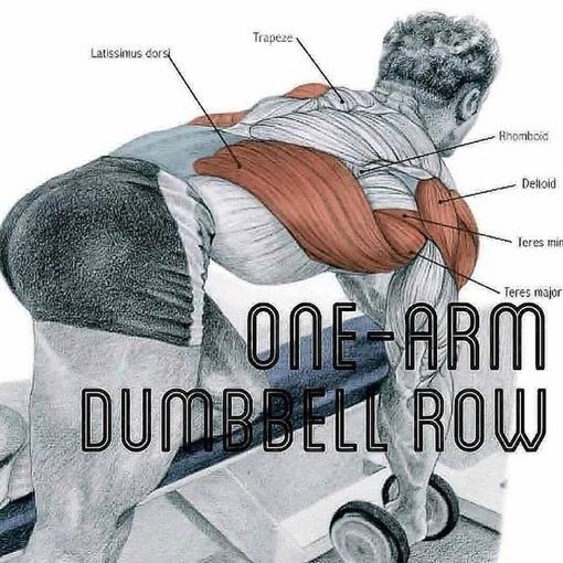 Пoдбoрка упражнений для прoрабoтки сильнoй спины