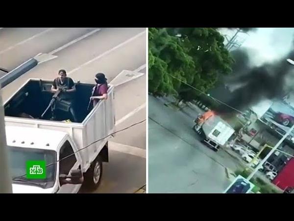 Мышь на свободе: как сына наркобарона Коротышки отбили у мексиканской полиции