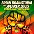 Brian brainstorm speaker louis