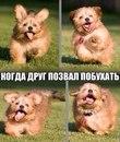 Фотоальбом Боди Кукляка